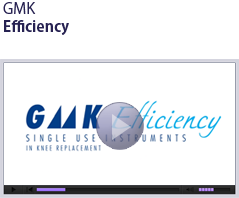 GMK Efficiency - Rose Associates, Inc - A Surgical Implant Distributor